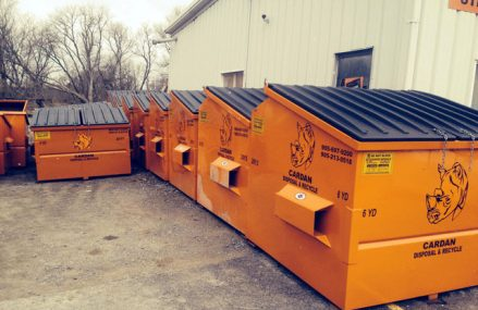 How bin rentals can help you to deal with garbage